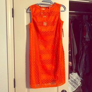 NWT Donna Morgan Coral Lucianna Crochet dress